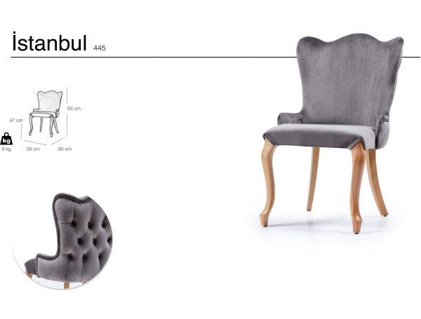 istanbul 445